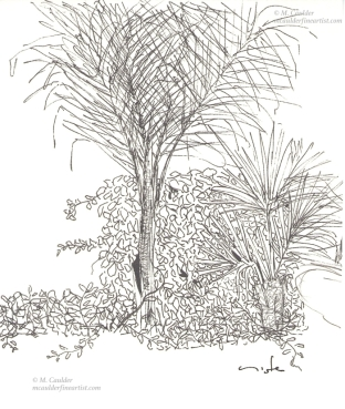 Pen sketch of a courtyard with palm trees by M. Caulder.