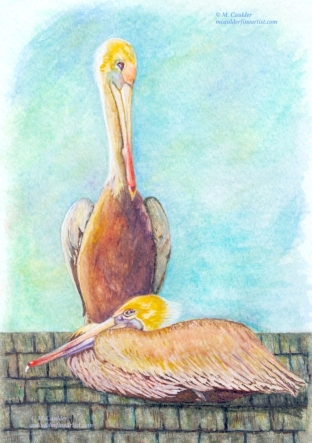 Watercolor painting of two pelicans at Newport Beach by M. Caulder.