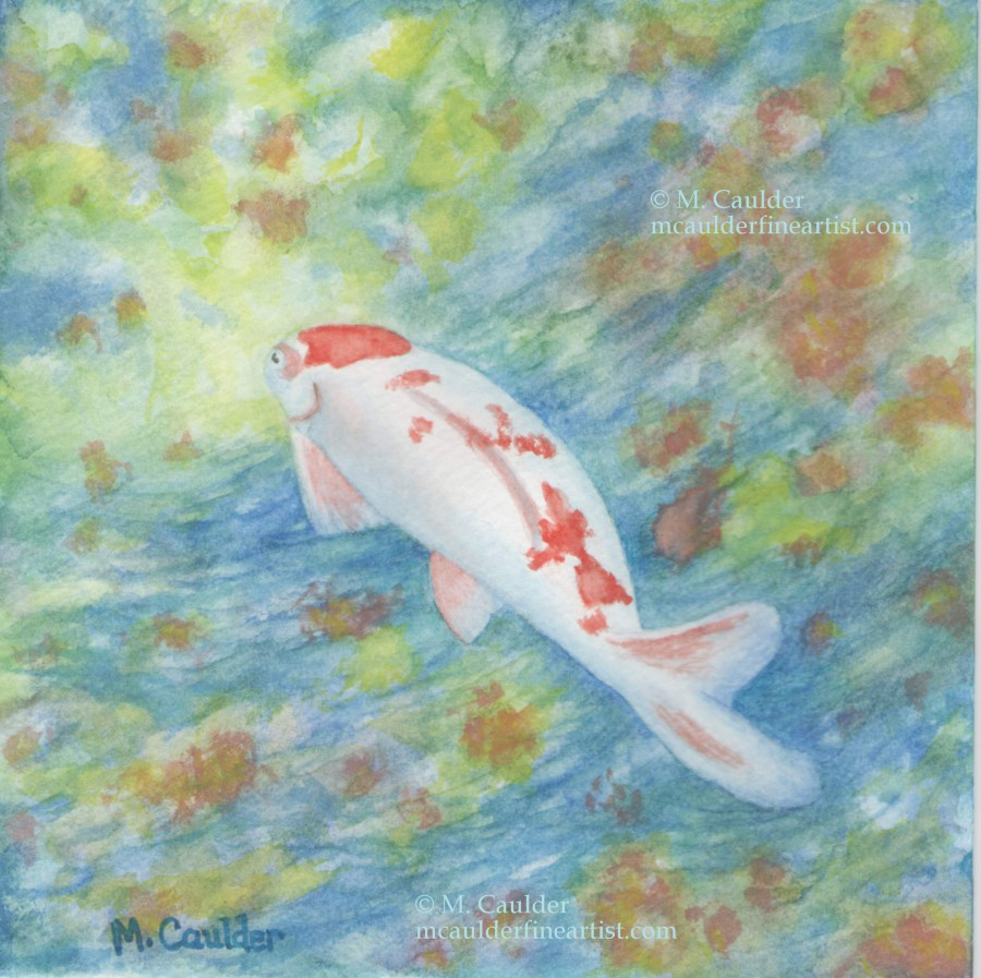 Watercolor sketch of a orange and white koi by M. Caulder.