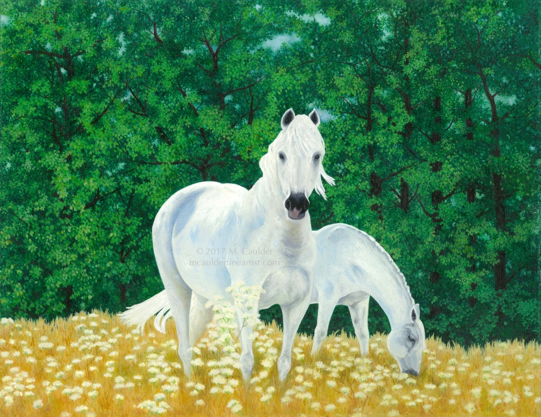 Watercolor painting of Lippezan white horses Spanish Riding School Vienna horses cropping grass by M. Caulder Watercolor Canvas Painting