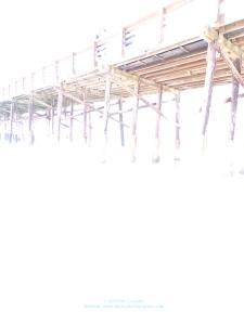 Photo of Newport Beach Pier, White Background